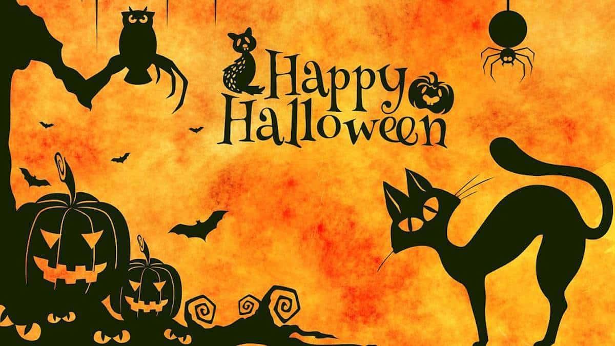 Halloween 2020 lo celebraremos en casa
